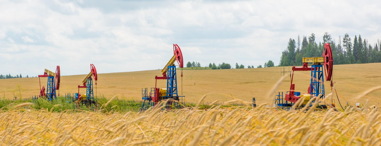 На нафтогазові аукціони виставили п'ять ділянок на Прикарпатті з початковою вартістю майже 50 млн грн