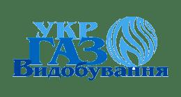 Третину надходжень від е-аукціонів дало Укргазвидобування